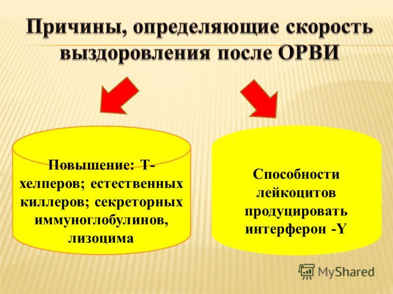 Повышение: Т- хелперов; естественных киллеров; секреторных иммуноглобулинов, лизоцима Способности лейкоцитов продуцировать интерферон -Y
