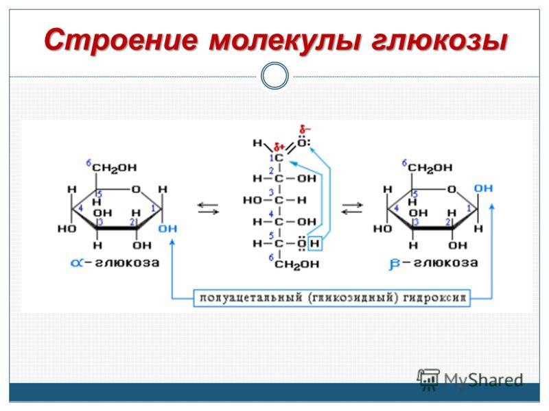 Строение молекулы глюкозы