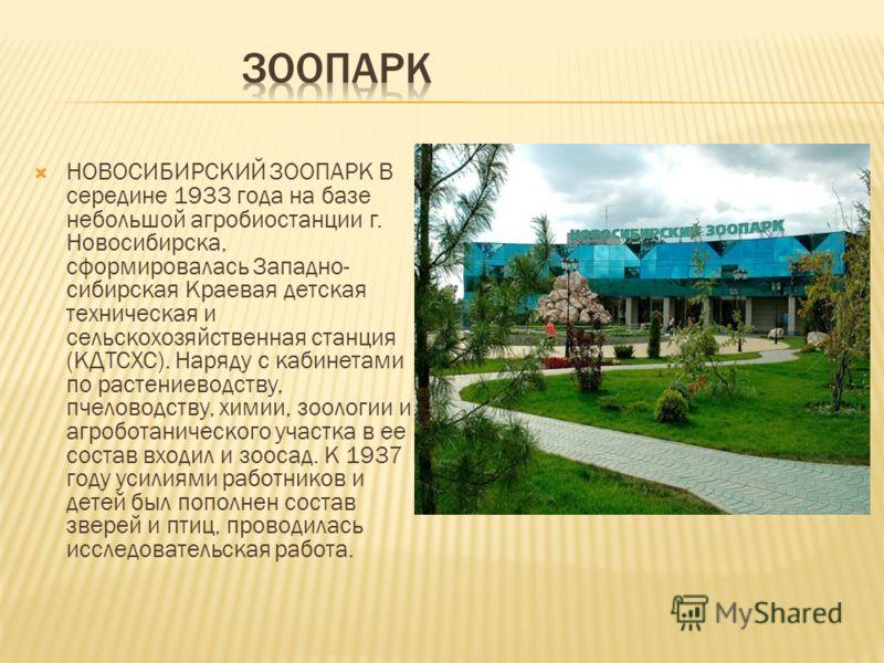 НОВОСИБИРСКИЙ ЗООПАРК В середине 1933 года на базе небольшой агробиостанции г. Новосибирска, сформировалась Западно- сибирская Краевая детская техническая и сельскохозяйственная станция (КДТСХС). Наряду с кабинетами по растениеводству, пчеловодству,