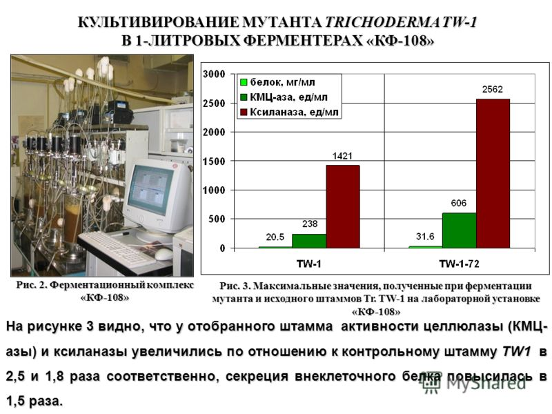 Рис. 2. Ферментационный комплекс «КФ-108» Рис. 3. Максимальные значения, полученные при ферментации мутанта и исходного штаммов Tr. TW-1 на лабораторной установке «КФ-108» КУЛЬТИВИРОВАНИЕ МУТАНТА TRICHODERMA TW-1 В 1-ЛИТРОВЫХ ФЕРМЕНТЕРАХ «КФ-108» На