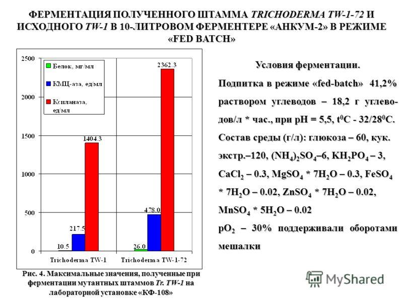 ФЕРМЕНТАЦИЯ ПОЛУЧЕННОГО ШТАММА TRICHODERMA TW-1-72 И ИСХОДНОГО TW-1 В 10-ЛИТРОВОМ ФЕРМЕНТЕРЕ «АНКУМ-2» В РЕЖИМЕ «FED BATCH» Условия ферментации. Подпитка в режиме «fed-batch» 41,2% раствором углеводов – 18,2 г углево- дов/л * час., при рН = 5,5, t 0
