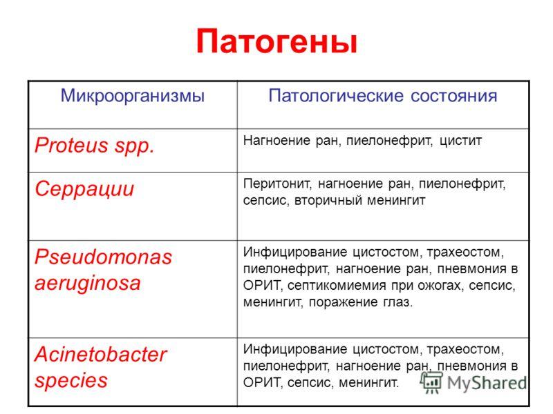 Патогены МикроорганизмыПатологические состояния Proteus spp. Нагноение ран, пиелонефрит, цистит Серрации Перитонит, нагноение ран, пиелонефрит, сепсис, вторичный менингит Pseudomonas aeruginosa Инфицирование цистостом, трахеостом, пиелонефрит, нагное