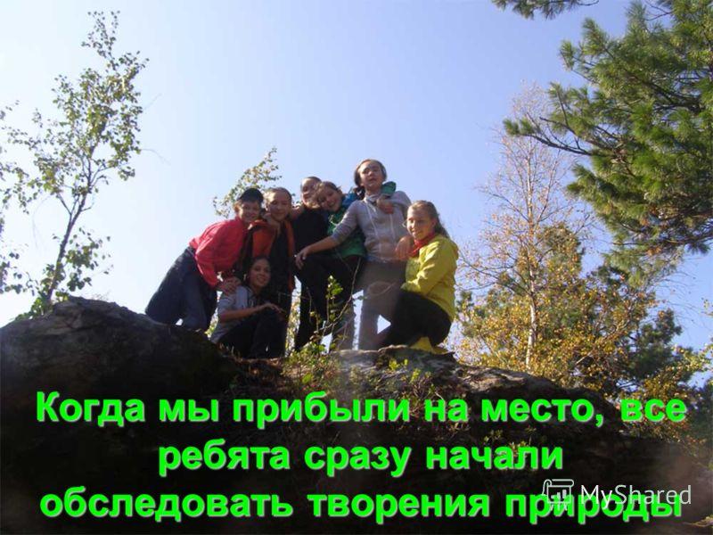 Когда мы прибыли на место, все ребята сразу начали обследовать творения природы