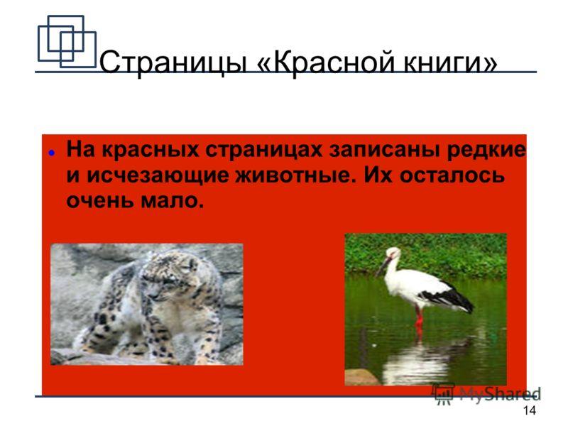 14 Страницы «Красной книги» На красных страницах записаны редкие и исчезающие животные. Их осталось очень мало.