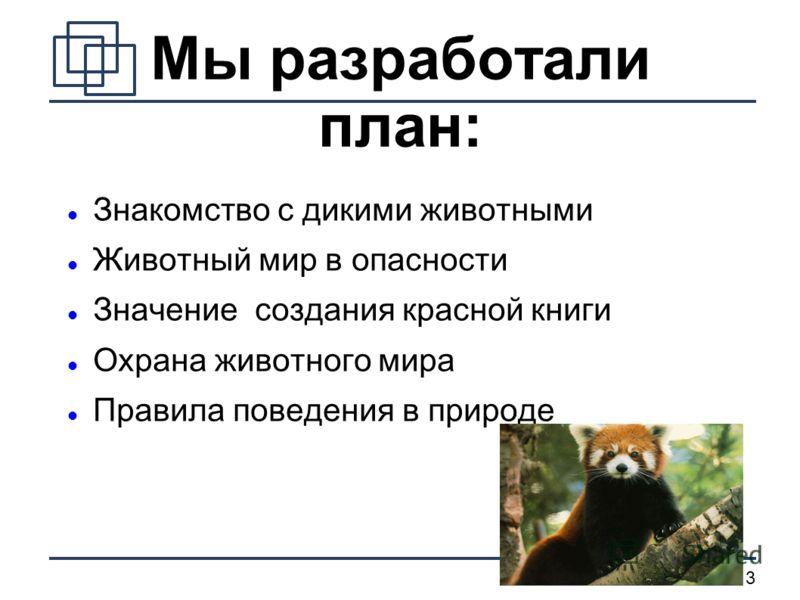 3 Мы разработали план: Знакомство с дикими животными Животный мир в опасности Значение создания красной книги Охрана животного мира Правила поведения в природе