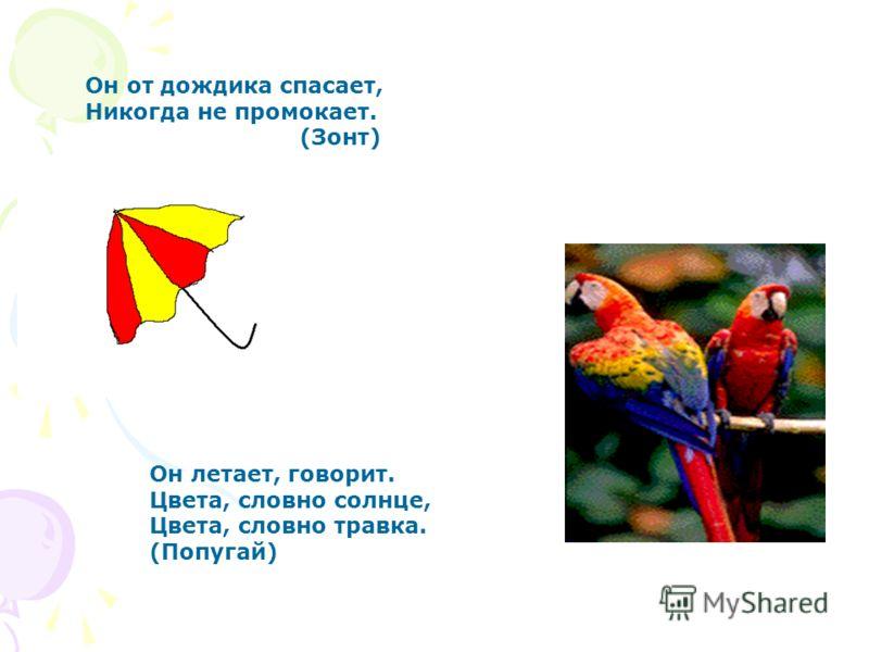 Он от дождика спасает, Никогда не промокает. (Зонт) Он летает, говорит. Цвета, словно солнце, Цвета, словно травка. (Попугай)