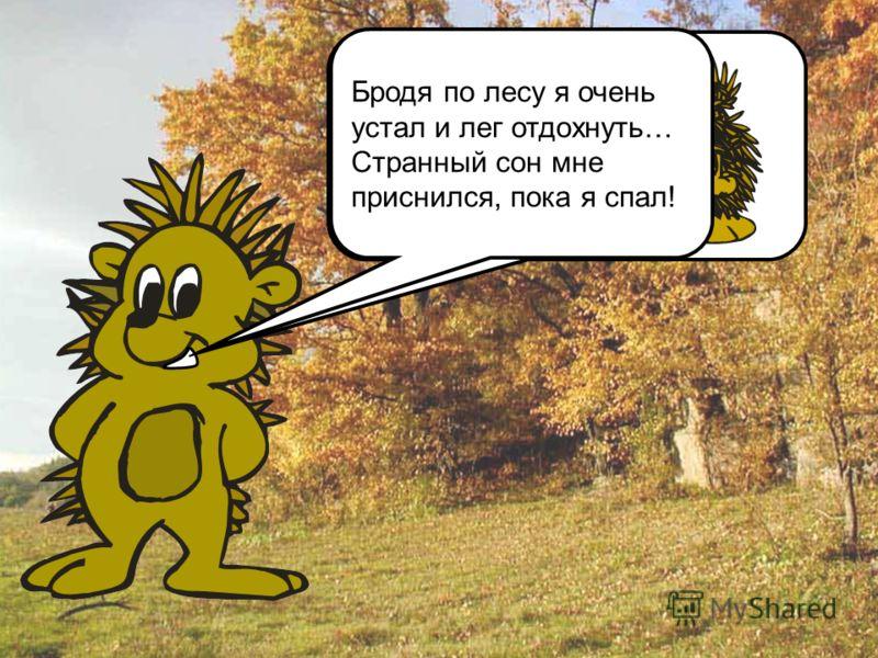 Привет, дружок! Я – Еж Егорка. Меня дед отправил в лес за грибами, Бродя по лесу я очень устал и лег отдохнуть… Странный сон мне приснился, пока я спал!