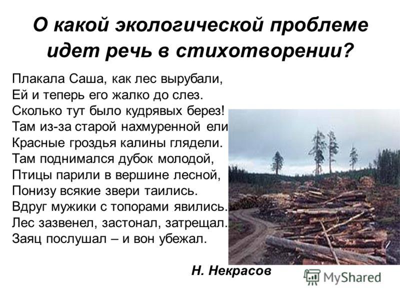 О какой экологической проблеме идет речь в стихотворении? Плакала Саша, как лес вырубали, Ей и теперь его жалко до слез. Сколько тут было кудрявых берез! Там из-за старой нахмуренной ели Красные гроздья калины глядели. Там поднимался дубок молодой, П