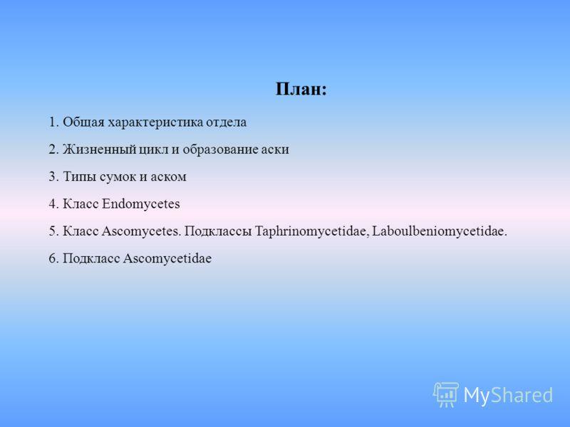 План: 1. Общая характеристика отдела 2. Жизненный цикл и образование аски 3. Типы сумок и аском 4. Класс Endomycetes 5. Класс Ascomycetes. Подклассы Taphrinomycetidae, Laboulbeniomycetidae. 6. Подкласс Ascomycetidae