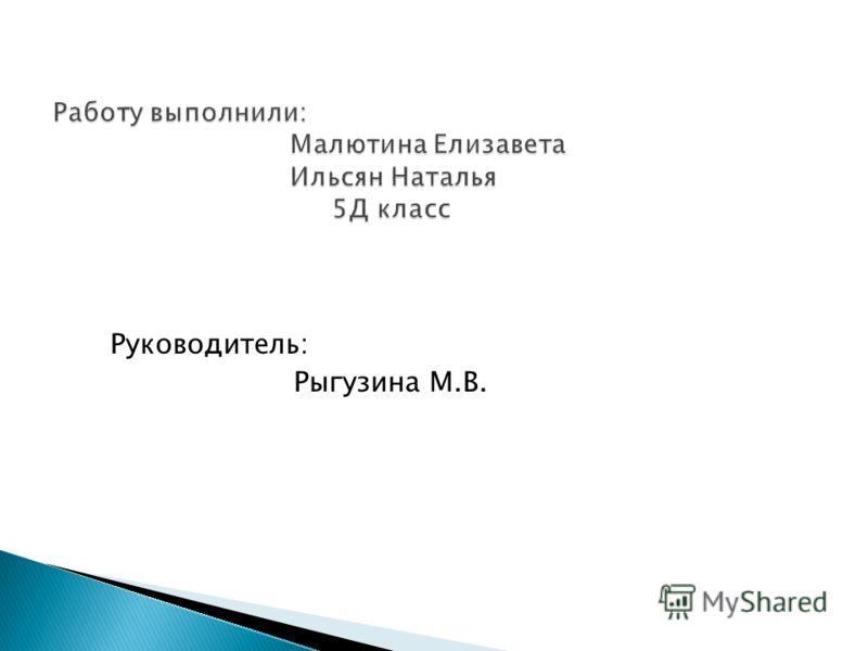 Руководитель: Рыгузина М.В.