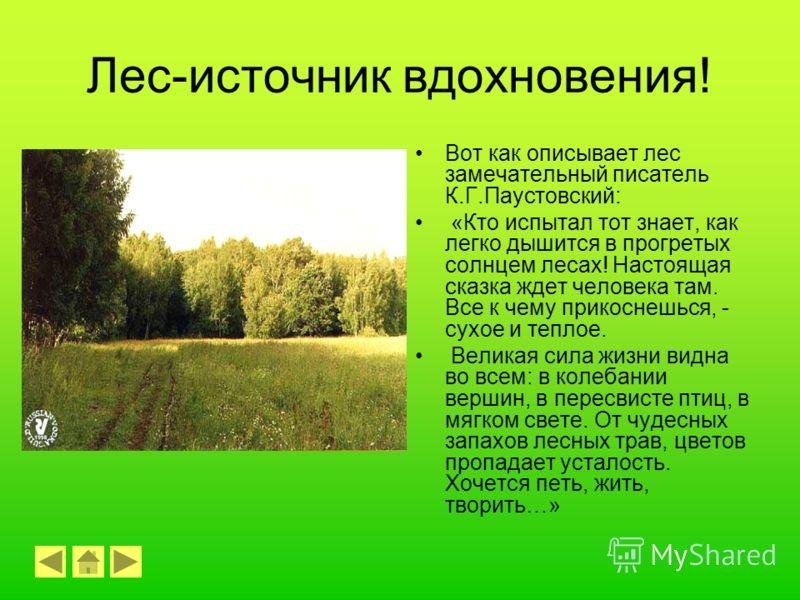 Растения в лесу располагаются ярусами. Нижний ярус –это мхи, лишайники и травы. Над ними возвышаются кустарники и молодая поросль. А верхний ярус образует зеленый шатер взрослых деревьев.