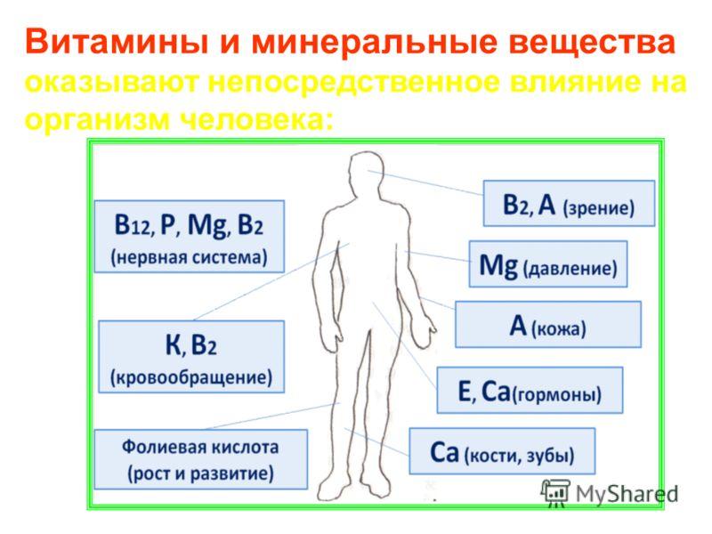 Витамины и минеральные вещества оказывают непосредственное влияние на организм человека: