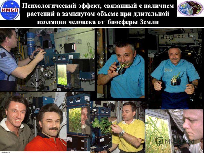 Психологический эффект, связанный с наличием растений в замкнутом объеме при длительной изоляции человека от биосферы Земли