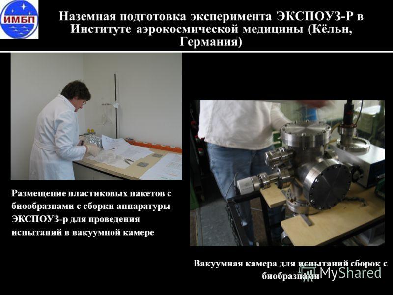 Наземная подготовка эксперимента ЭКСПОУЗ-Р в Институте аэрокосмической медицины (Кёльн, Германия) Размещение пластиковых пакетов с биообразцами с сборки аппаратуры ЭКСПОУЗ-р для проведения испытаний в вакуумной камере Вакуумная камера для испытаний с