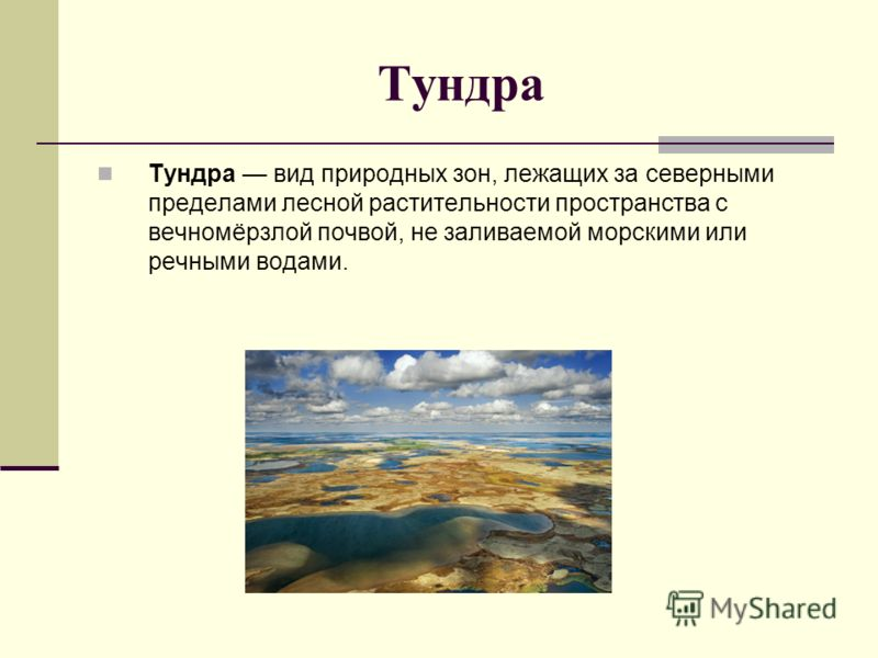 Тундра вид природных зон, лежащих за северными пределами лесной растительности пространства с вечномёрзлой почвой, не заливаемой морскими или речными водами.
