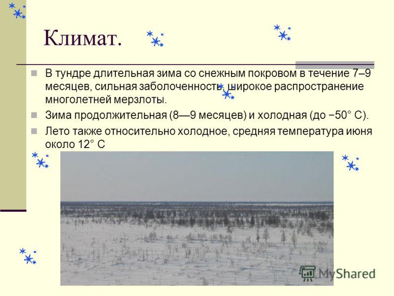 Климат. В тундре длительная зима со снежным покровом в течение 7–9 месяцев, сильная заболоченность, широкое распространение многолетней мерзлоты. Зима продолжительная (89 месяцев) и холодная (до 50° С). Лето также относительно холодное, средняя темпе