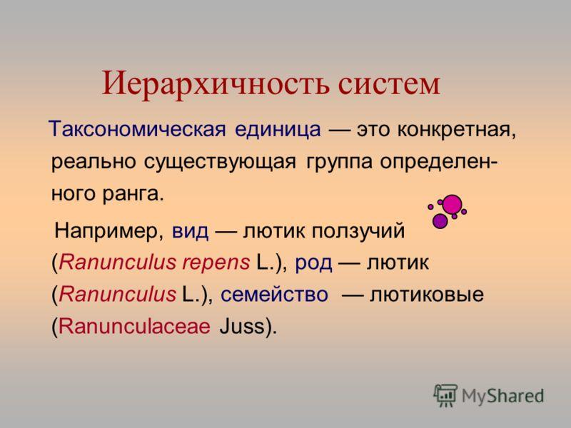 Иерархичность систем Таксономическая единица это конкретная, реально существующая группа определен- ного ранга. Например, вид лютик ползучий (Ranunculus repens L.), род лютик (Ranunculus L.), семейство лютиковые (Ranunculaceae Juss).