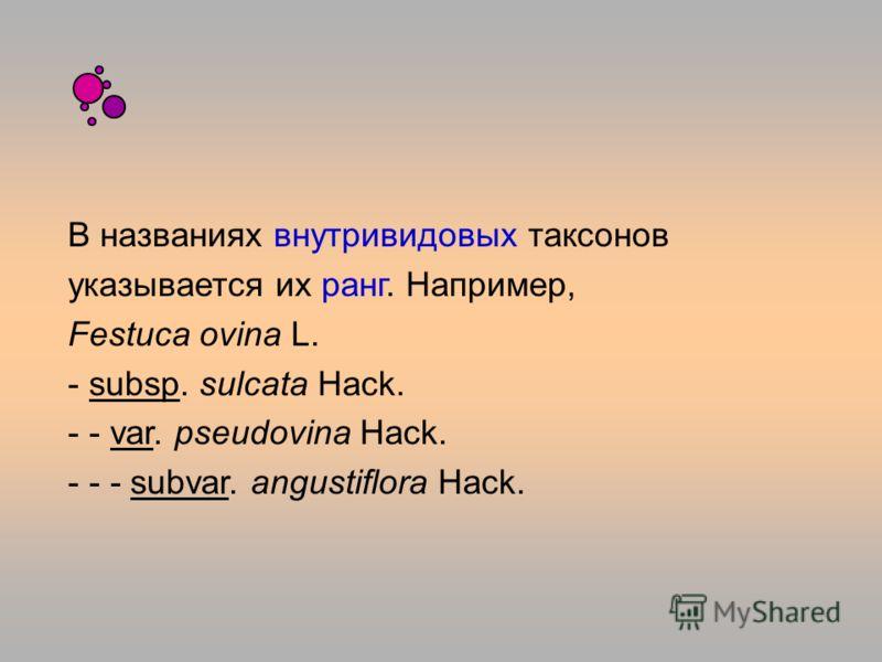 В названиях внутривидовых таксонов указывается их ранг. Например, Festuca ovina L. - subsp. sulcata Hack. - - var. pseudovina Hack. - - - subvar. angustiflora Hack.