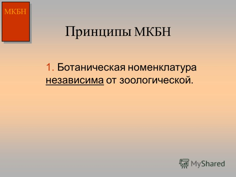 Принципы МКБН МКБН 1. Ботаническая номенклатура независима от зоологической.