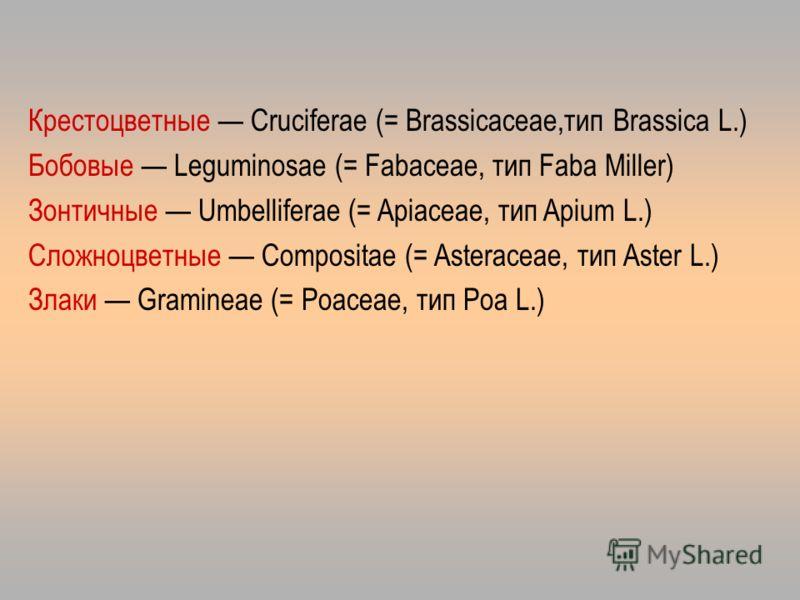 Крестоцветные Cruciferae (= Brassicaceae,тип Brassica L.) Бобовые Leguminosae (= Fabaceae, тип Faba Miller) Зонтичные Umbelliferae (= Apiaceae, тип Apium L.) Сложноцветные Compositae (= Asteraceae, тип Aster L.) Злаки Gramineae (= Роасеае, тип Роа L.