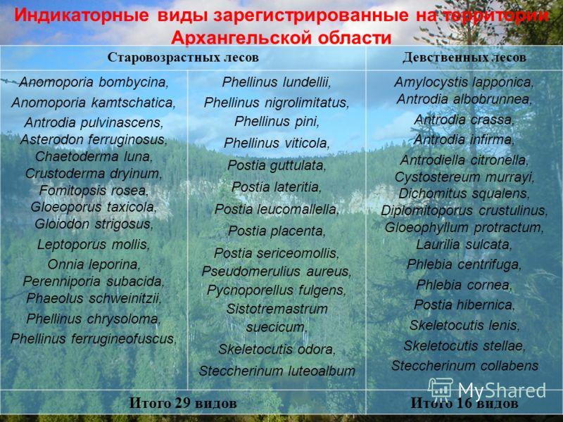 Индикаторные виды зарегистрированные на территории Архангельской области Старовозрастных лесовДевственных лесов Anomoporia bombycina, Anomoporia kamtschatica, Antrodia pulvinascens, Asterodon ferruginosus, Chaetoderma luna, Crustoderma dryinum, Fomit