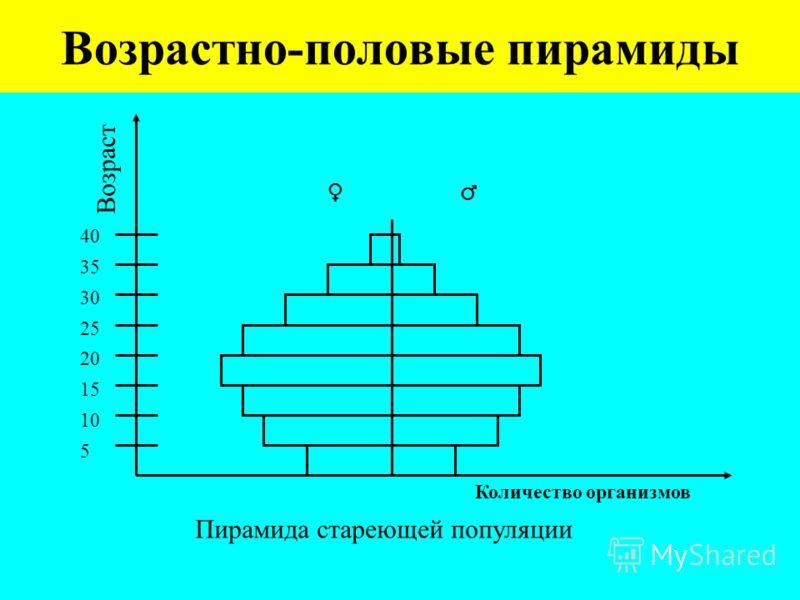 Возрастно-половые пирамиды Количество организмов 40 35 30 25 20 15 10 5 Возраст Пирамида стареющей популяции