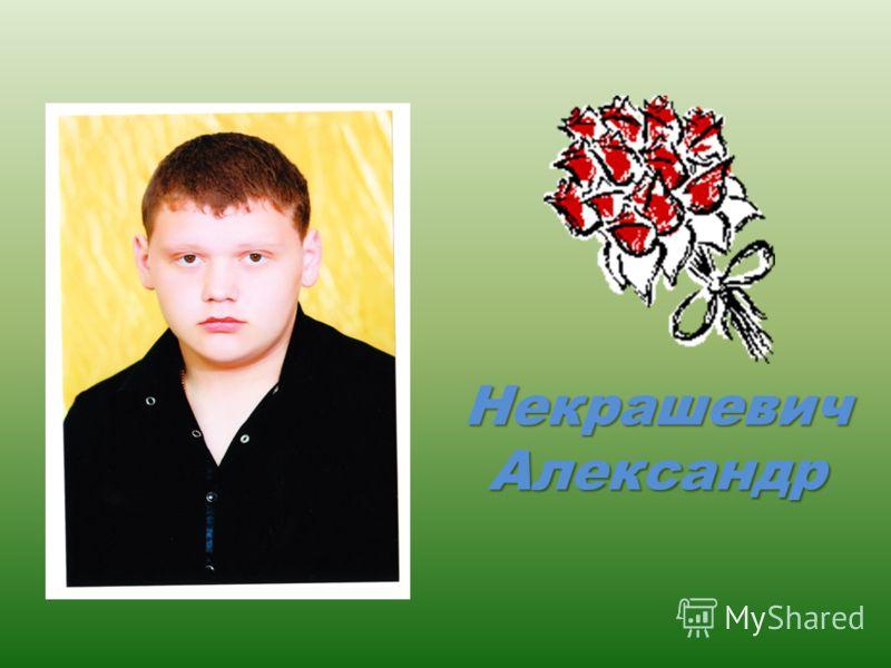 Некрашевич Александр