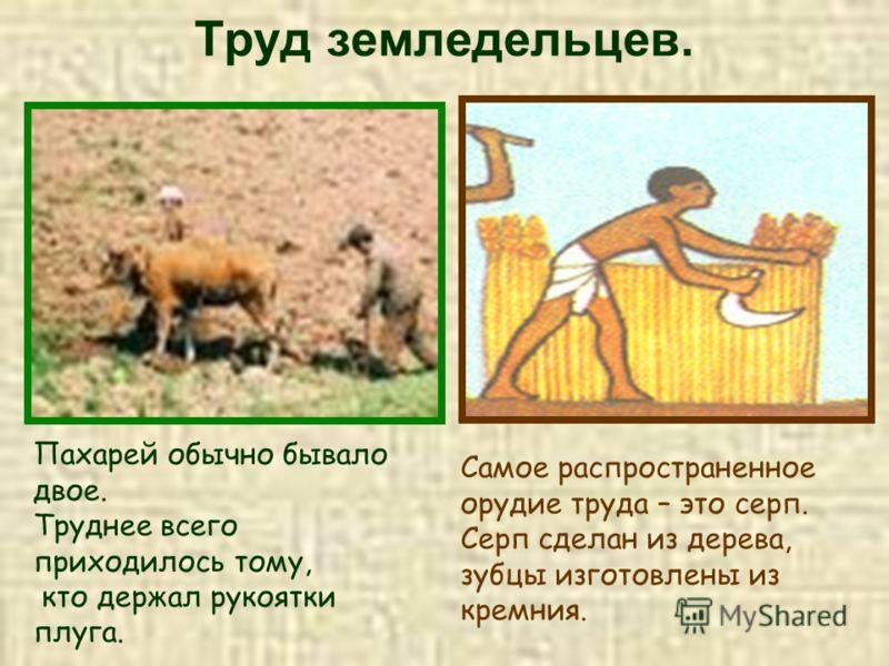 Труд земледельцев. Пахарей обычно бывало двое. Труднее всего приходилось тому, кто держал рукоятки плуга. Самое распространенное орудие труда – это серп. Серп сделан из дерева, зубцы изготовлены из кремния.