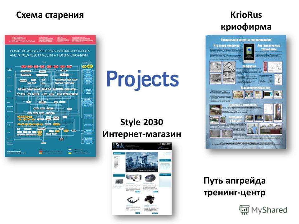 Style 2030 Интернет-магазин Путь апгрейда тренинг-центр KrioRus криофирма Схема старения