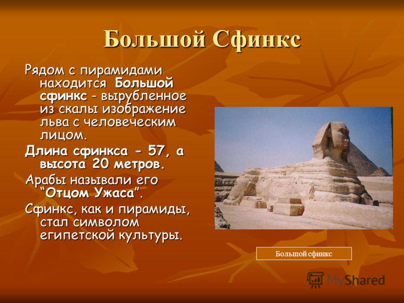 Большой Сфинкс Рядом с пирамидами находится Большой сфинкс - вырубленное из скалы изображение льва с человеческим лицом. Длина сфинкса - 57, а высота 20 метров. Арабы называли егоОтцом Ужаса. Сфинкс, как и пирамиды, стал символом египетской культуры.