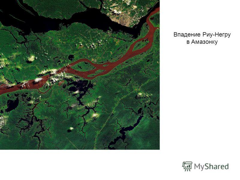Впадение Риу-Негру в Амазонку