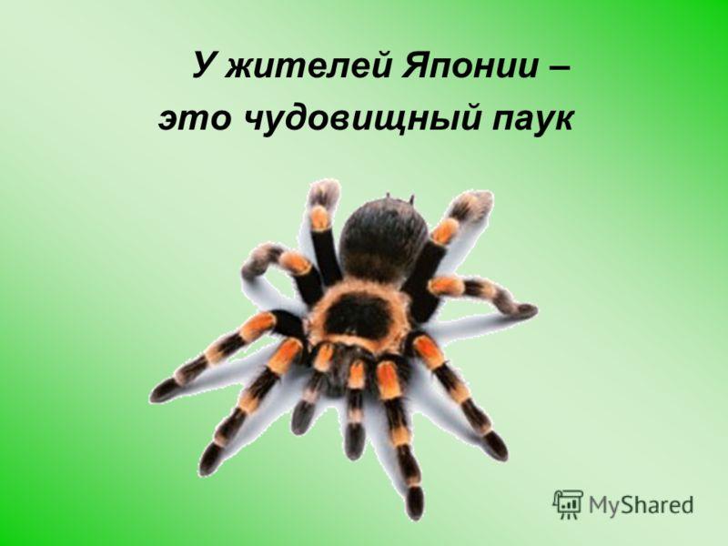 У жителей Японии – это чудовищный паук