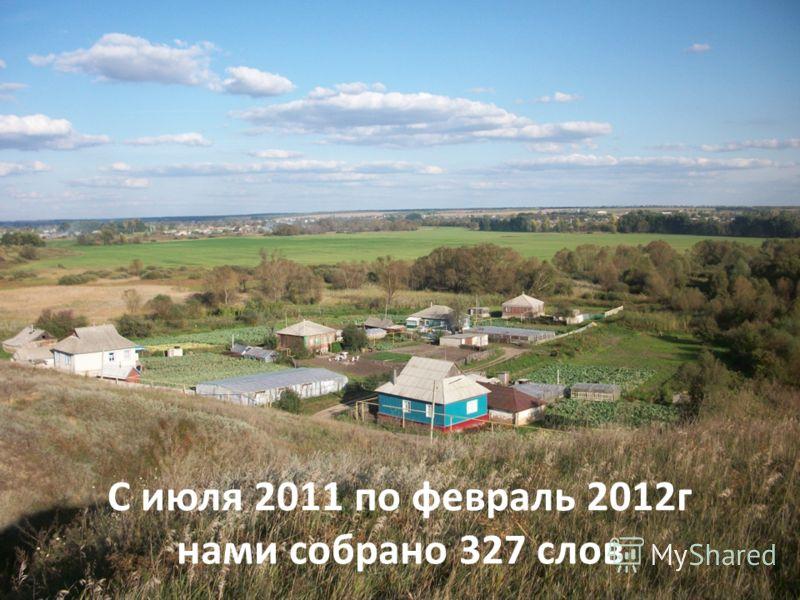 С июля 2011 по февраль 2012г нами собрано 327 слов