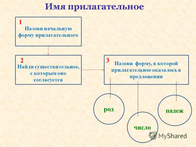 Имя прилагательное Назови начальную форму прилагательного Найди существительное, с которым оно согласуется Назови форму, в которой прилагательное оказалось в предложении род число падеж 1 23