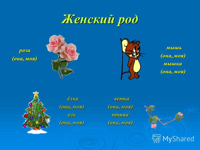 Женский род роза роза (она, моя) мышь мышь (она, моя) (она, моя) мышка мышка (она, моя) (она, моя) ёлка ёлка (она, моя) (она, моя) ель ель (она, моя) (она, моя) ветка ветка (она, моя) (она, моя) птица птица (она, моя) (она, моя)