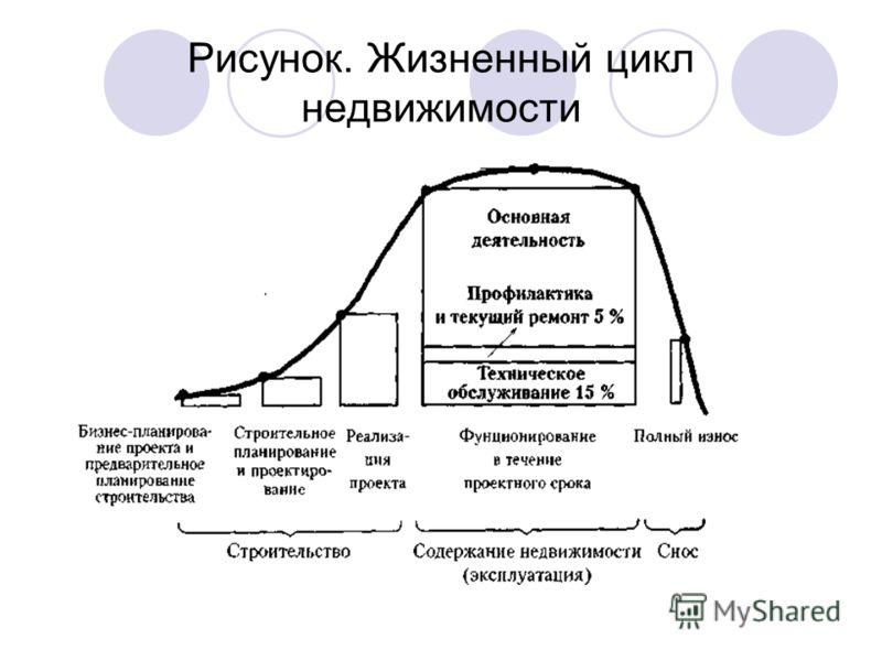 Рисунок. Жизненный цикл недвижимости