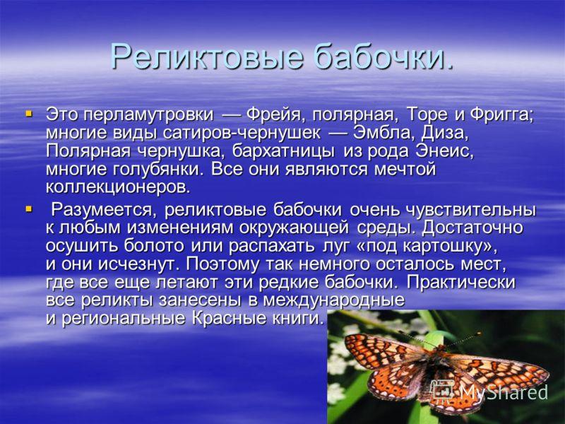 Реликтовые бабочки. Это перламутровки Фрейя, полярная, Торе и Фригга; многие виды сатиров-чернушек Эмбла, Диза, Полярная чернушка, бархатницы из рода Энеис, многие голубянки. Все они являются мечтой коллекционеров. Это перламутровки Фрейя, полярная,