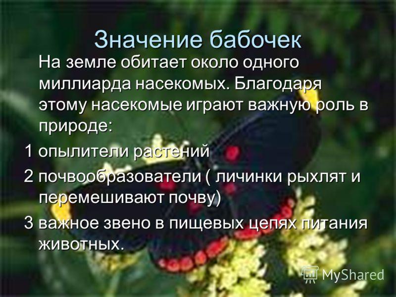 Значение бабочек На земле обитает около одного миллиарда насекомых. Благодаря этому насекомые играют важную роль в природе: На земле обитает около одного миллиарда насекомых. Благодаря этому насекомые играют важную роль в природе: 1 опылители растени
