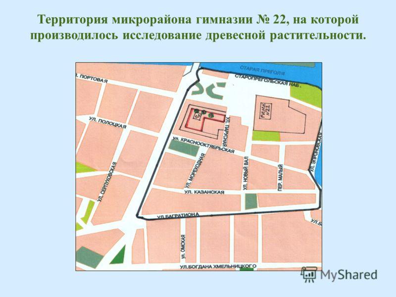Территория микрорайона гимназии 22, на которой производилось исследование древесной растительности.