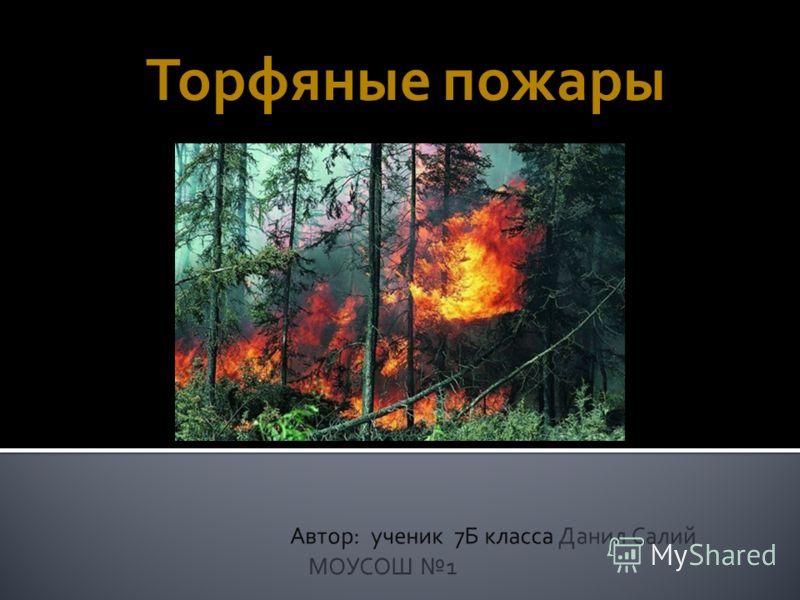 Торфяные и лесные пожары доклад 8432