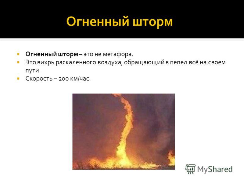 Огненный шторм – это не метафора. Это вихрь раскаленного воздуха, обращающий в пепел всё на своем пути. Скорость – 200 км/час.