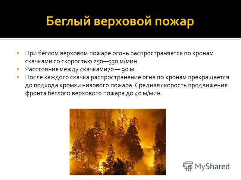 При беглом верховом пожаре огонь распространяется по кронам скачками со скоростью 250330 м/мин. Расстояние между скачками70 90 м. После каждого скачка распространение огня по кронам прекращается до подхода кромки низового пожара. Средняя скорость про