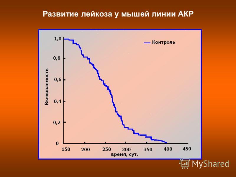 Развитие лейкоза у мышей линии АКР