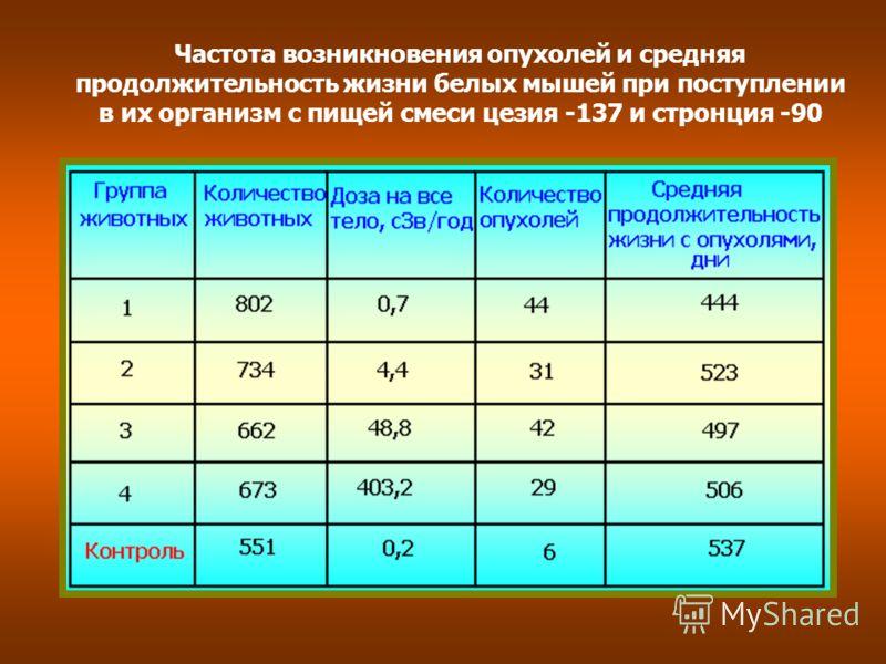 Частота возникновения опухолей и средняя продолжительность жизни белых мышей при поступлении в их организм с пищей смеси цезия -137 и стронция -90