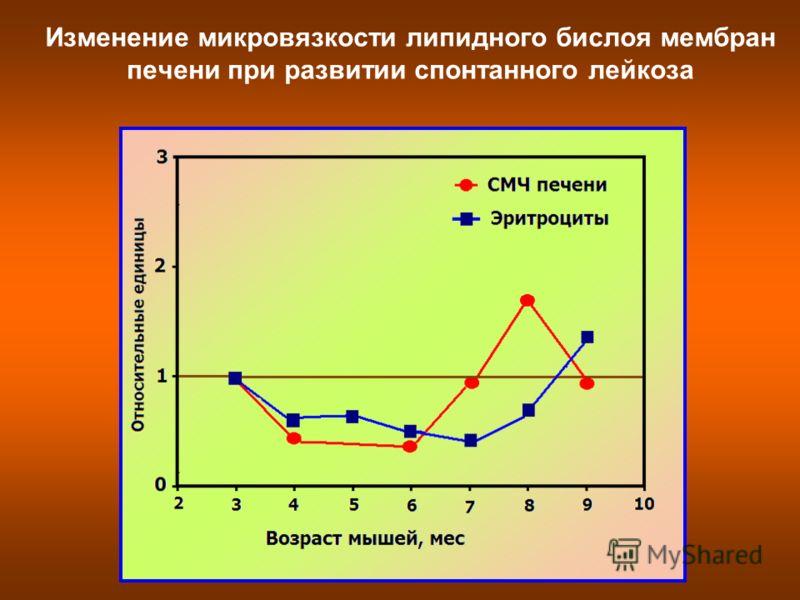 Изменение микровязкости липидного бислоя мембран печени при развитии спонтанного лейкоза
