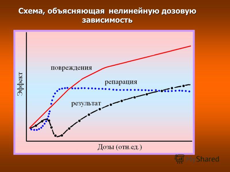 Схема, объясняющая нелинейную дозовую зависимость