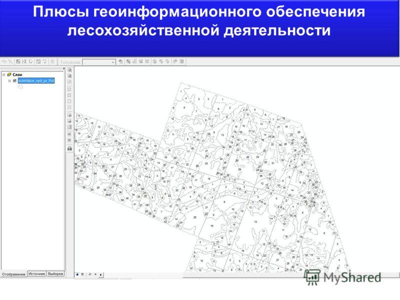 Плюсы геоинформационного обеспечения лесохозяйственной деятельности