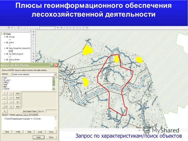 Плюсы геоинформационного обеспечения лесохозяйственной деятельности Запрос по характеристикам/поиск объектов «Преобладающая порода» = «Сосна»