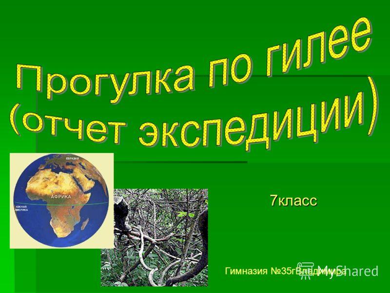 7класс Гимназия 35гВладимира