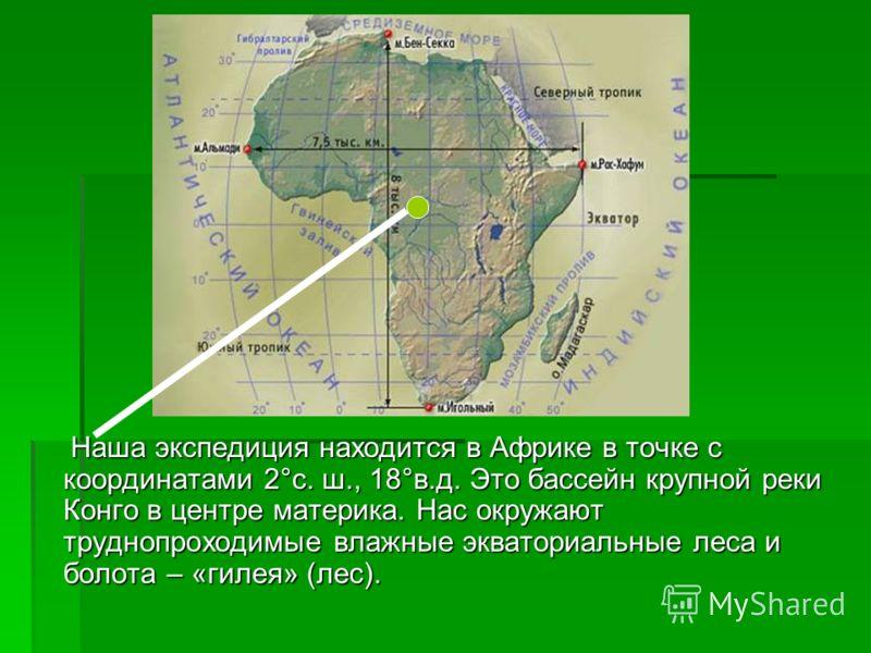 Наша экспедиция находится в Африке в точке с координатами 2°с. ш., 18°в.д. Это бассейн крупной реки Конго в центре материка. Нас окружают труднопроходимые влажные экваториальные леса и болота – «гилея» (лес). Наша экспедиция находится в Африке в точк